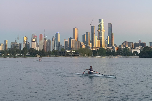 Man rowing on albert park lake, with Melbourne CBD in the background